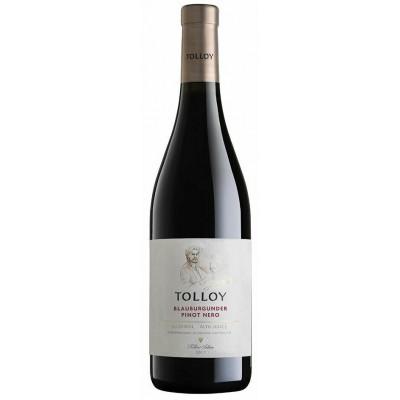 Tolloy Pinot Nero