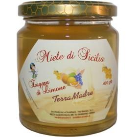 Miel de fleur citronnier