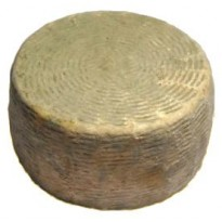 Caprino della razza Girgentana a Crosta Fiorita