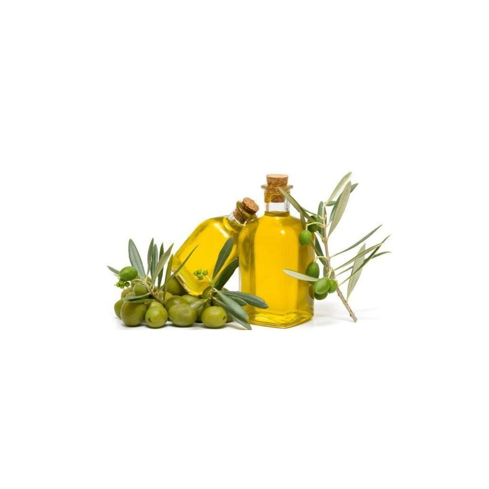Extra virgin olive oil TerraMadre