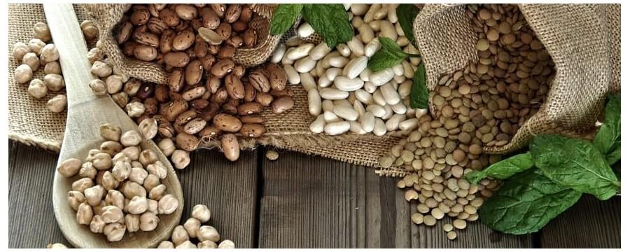 Légumes secs biologiques