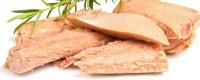 Jetzt bestellen - Sizilianische Fischkonserven